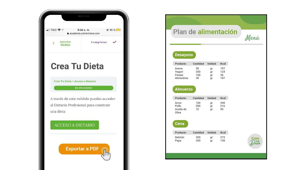 Exportar dieta PDF
